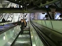 Mujaji Subterranea